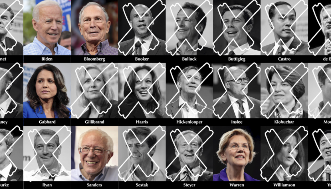 Democratic Candidates copy